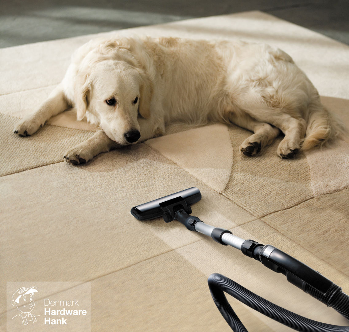 Denmark Hardware Hank carpet dog